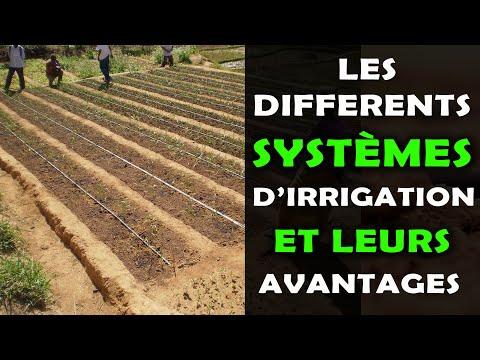Les Différents Systèmes D'Irrigation en Agriculture et Leurs Avantages