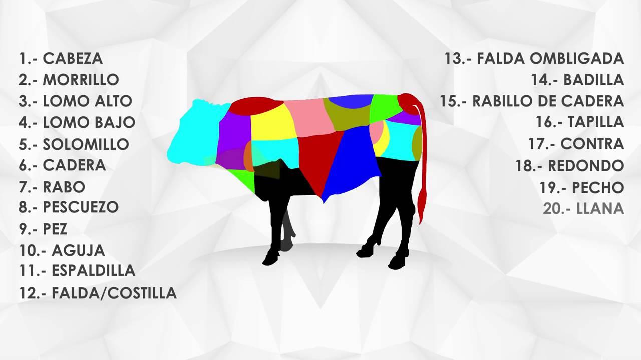 Las partes de una vaca - YouTube