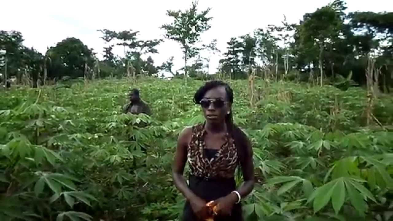 land rights and agricultural investment in ghana Bitland ghana land title blockchain protection 929 views 6:12 how to buy real estate land plots for sale in ghana | bitland estates land title registration - duration: 1:50.