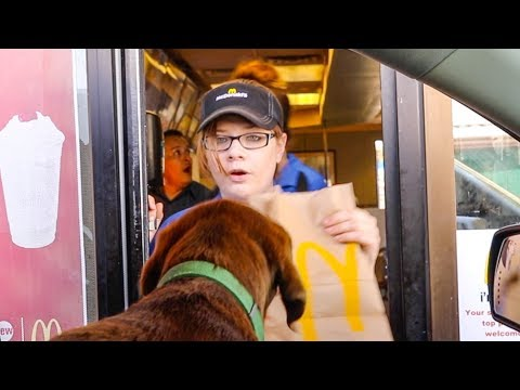 DRIVE THRU PUPPY SWAP PRANK!!