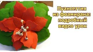 DIY: foam flowers tutorial. Пуансеттия из фоамирана: подробный видео урок
