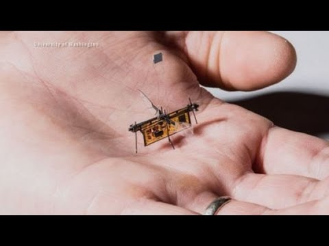 University of Washington engineers created the RoboFly, a small, flying robot that goes where humans