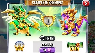 Dragon City: High Virago Dragon vs High Frozen Dragon [EXCLUSIVE BREEDING] 😱