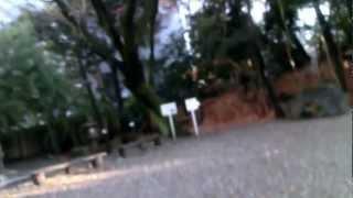 揚輝荘 3 名古屋の人気スポット・覚王山の一画にある歴史ある邸宅。