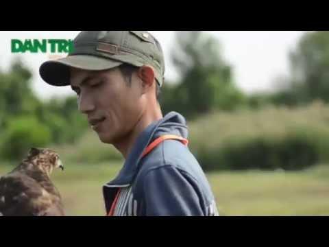 Cuộc Thi Chim Săn Mồi Miền Nam lần 1 (Viet Nam Falconry)
