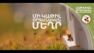 Մի կաթիլ օրգանական մեղր / A drop of organic honey