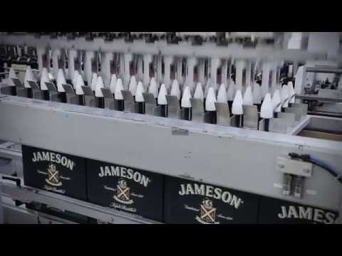 Зарождение виски Jameson.