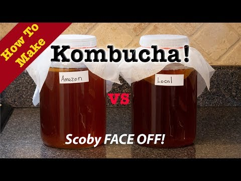 how to make kombucha without scoby