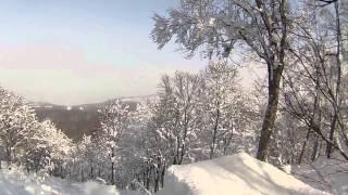 Nozawa Onsen Japan Snowboard ShrEdit 2014