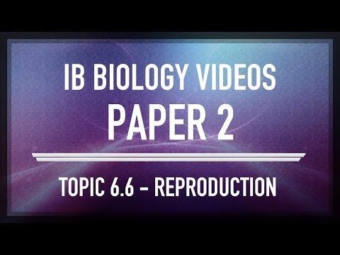 Reproduction - IB SL Biology Past Exam Paper 2 Questions