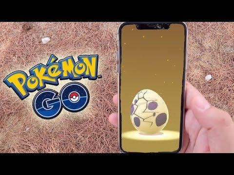 ¡ABRIENDO HUEVOS del Pokémon GO COMMUNITY DAY! ¿¡Mayor posibilidad de shiny!? [Keibron]
