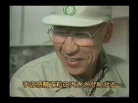 Nihonga gofun pigment manufacturing records.