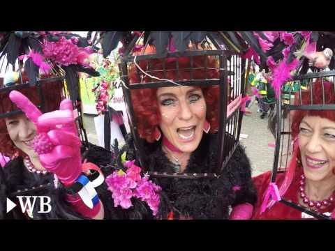 Hasi Palau! Karnevalsparade zieht durch Paderborn