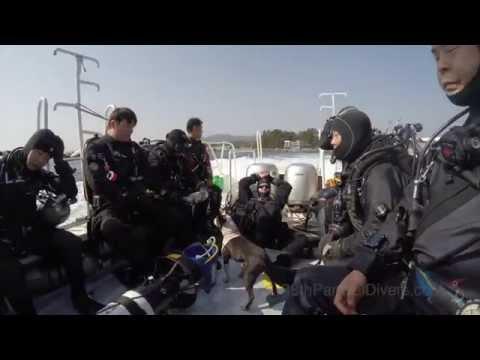 2015 First Scuba Diving Event