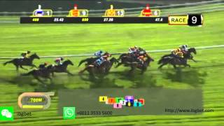 20151016 Singapore Horse Race Results Race 9