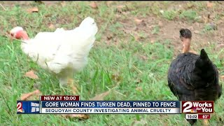 Gore Woman Finds Turken Dead, Pinned To Fence