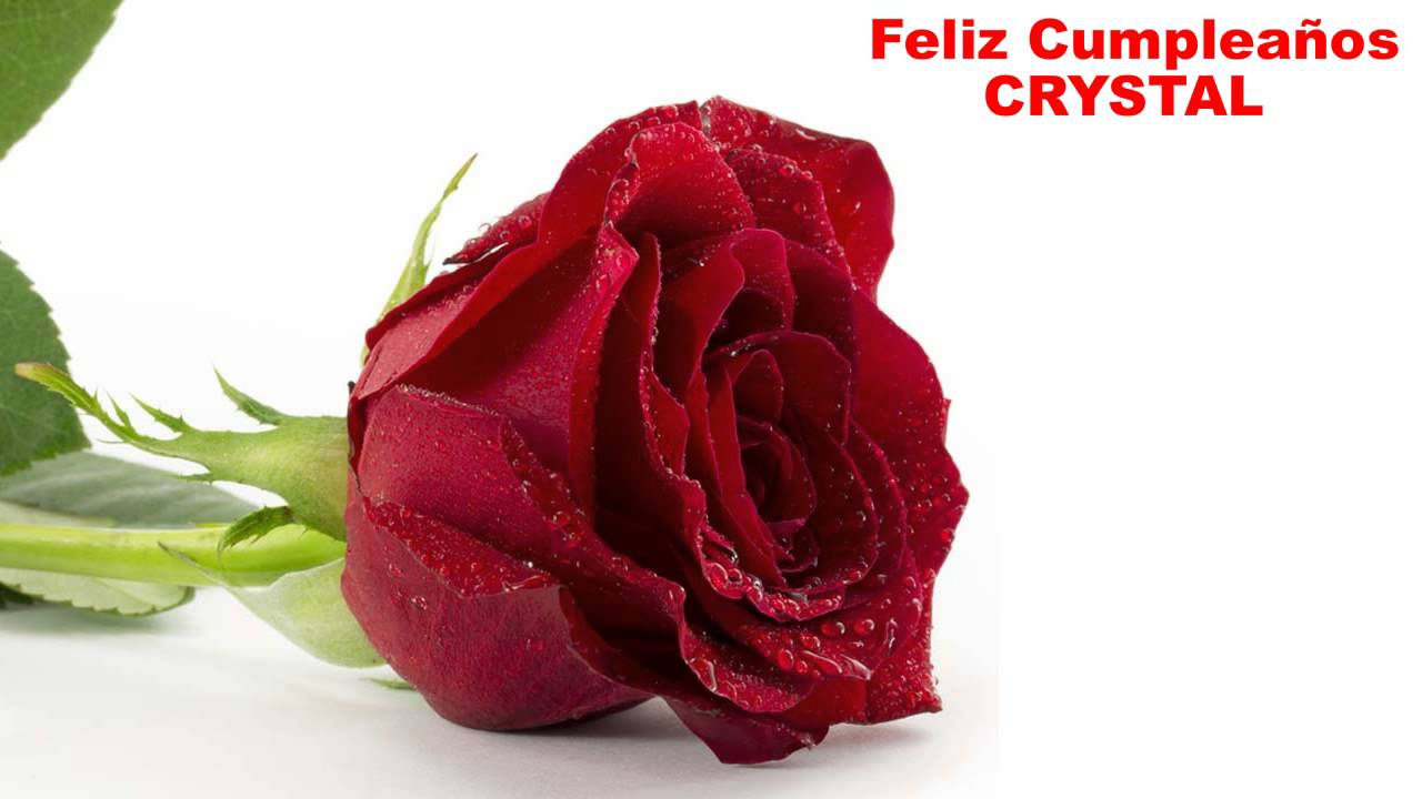 Crystal flowers happy birthday youtube izmirmasajfo