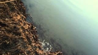 ловля налима на закидушку(достаем третью закидушку река обь весна налим., 2014-04-19T11:19:11.000Z)
