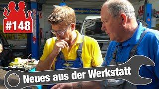 Wasserverlust im VW Golf - Endoskop lässt Schlimmes vermuten | So bekommt man Vogelmist vom Lack