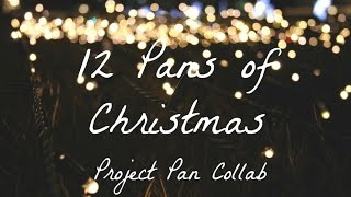 12 Pans of Christmas INTRO // Project Pan Collab