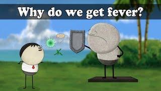 Pathogens - Why do we get fever? | #aumsum #kids #science #education #children