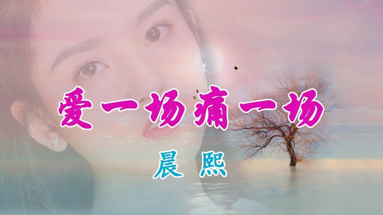 晨熙-爱一场痛一场【你的世界再没有了我 从此后一个人走】高清MV~动感歌词