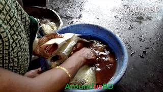 Big fish cutting Grandma in villages |  Grandma Cutting Big Fish in her village house