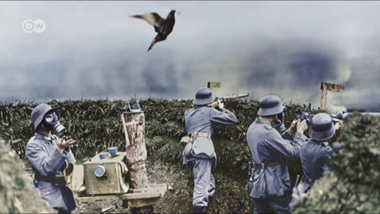 Centenario Del Fin De La Primera Guerra Mundial Youtube