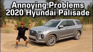 Here's Why People are Annoyed with 2020 Hyundai Palisade