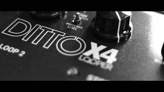Ditto X4 Looper - official product video