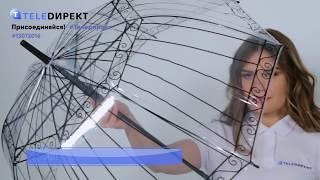 Видеообзор: Зонт
