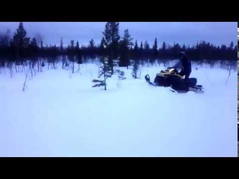 Снегоход BRP Ski-Doo Tundra WT-550