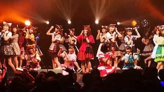 【ネコ耳コラボ】わーすた / いぬねこ。青春真っ盛り@2019.3.4「ネコフェス」渋谷TSUTAYA O-EAST