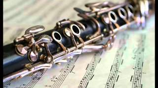 Download Dolgaya Noch   Klarnet Instrumental Mp3 and Videos
