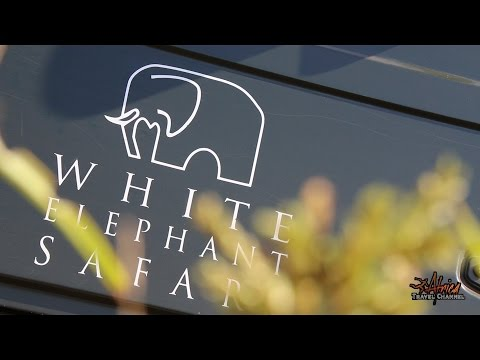 White Elephant Safari Lodge - Accommodation Pongola South Africa - Africa Travel Channel