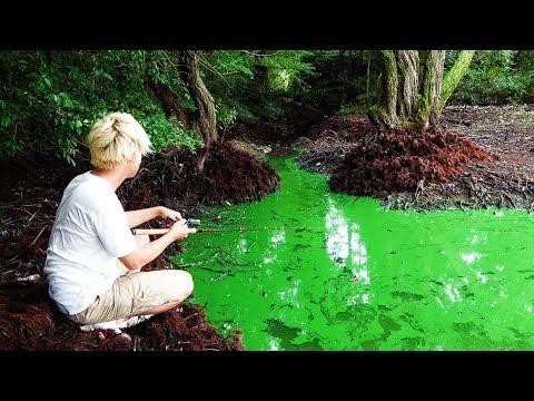 緑色��れ込��ルアーを投��ら�����。