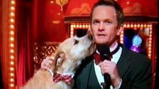 Video Neil Patrick Harris French kisses the dog from Annie at the 2013 Tony Awards download MP3, 3GP, MP4, WEBM, AVI, FLV November 2017