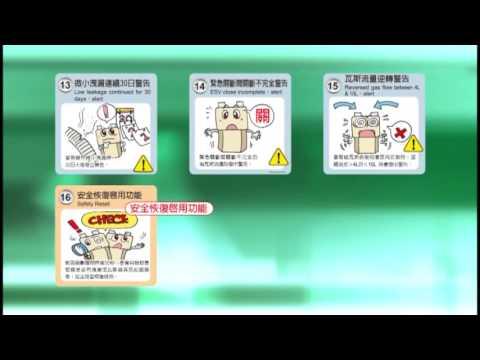 功量企業股份有限公司 微電腦瓦斯表及系統簡介 中文版