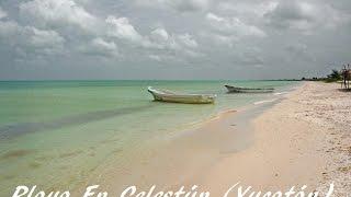 Playa En Celestún (Yucatán)