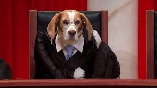 Descamps v. United States: Oral Argument - January 07, 2013