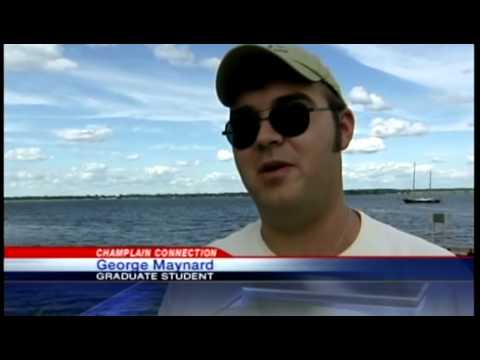 Researchers tag bass in Lake Champlain, New York - WPTZ News