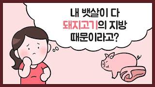 [오해하기 쉬운 축산물 정보] 내 뱃살이 다 '돼지고기…