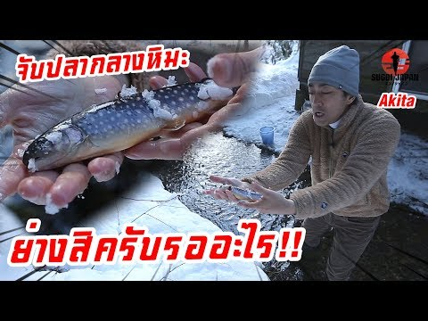 พักโฮมสเตย์ญี่ปุ่นจับปลาหลังบ้านมาย่างกิน SUGOI JAPAN-สุโก้ยเจแปน ตอนที่ 231 Akita thumbnail