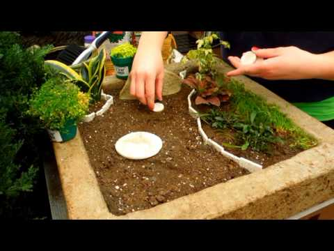 How to make a fairy garden youtube for Making a small garden