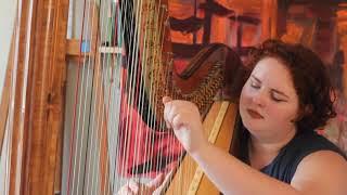 Bella Note Harp Cover