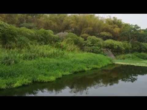Reimund Hess & seine TV-Band (Germany) - Nature Boy / Mademoiselle Ninette