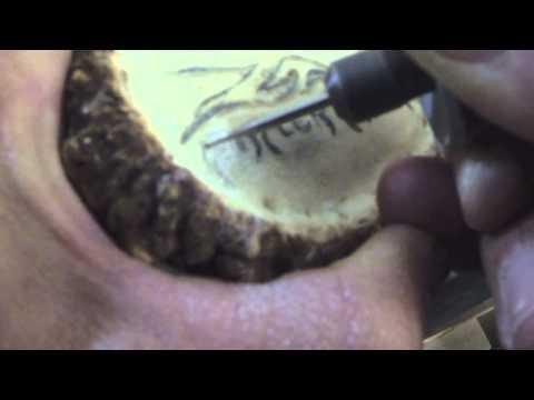 HOW TO MAKE AN ELK ANTLER BELT BUCKLE