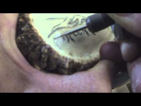 HOW TO MAKE AN ELK ANTLER BELT BUCKLE