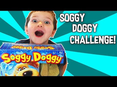 Let's Play the SOGGY DOGGY TOY CHALLENGE! 2017 Hot Christmas Toy List Family Fun Kids Game Review