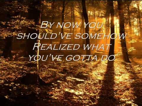 Ryan Adams - Wonderwall (With Lyrics)